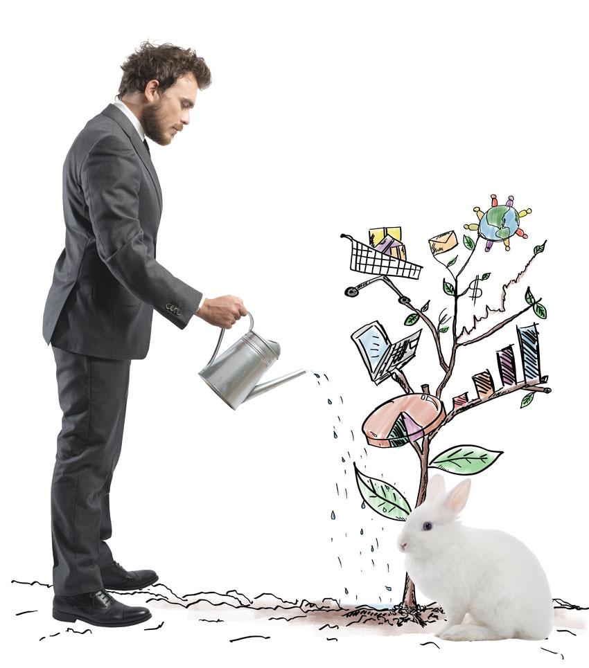 Развитие бизнеса